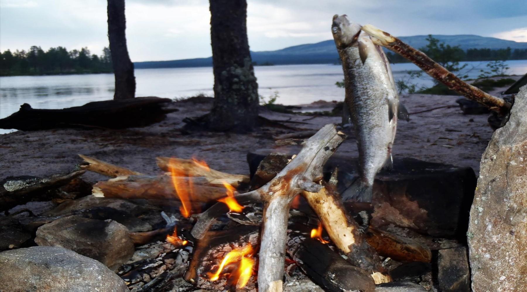 Kanureise: Kanutour in Norwegen (Bild)